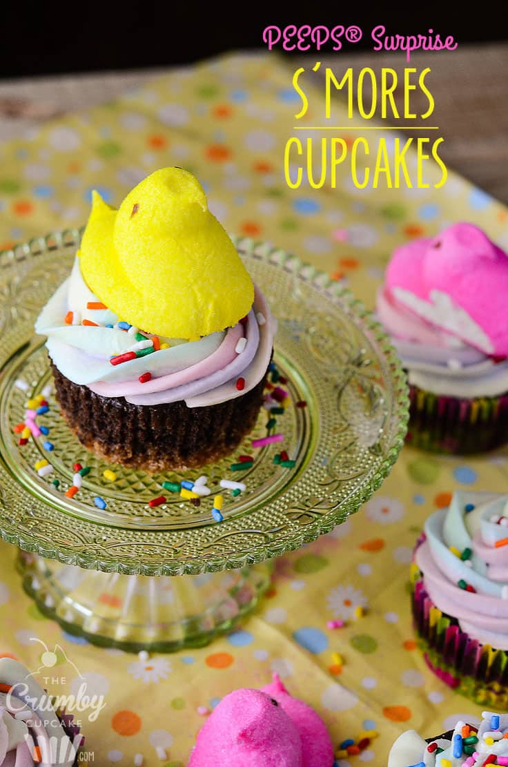 PEEPS® Surprise S'mores Cupcakes | These sweet little chocolate & graham cracker cupcakes contain a secret surprise - they're filled & iced with PEEPS®!
