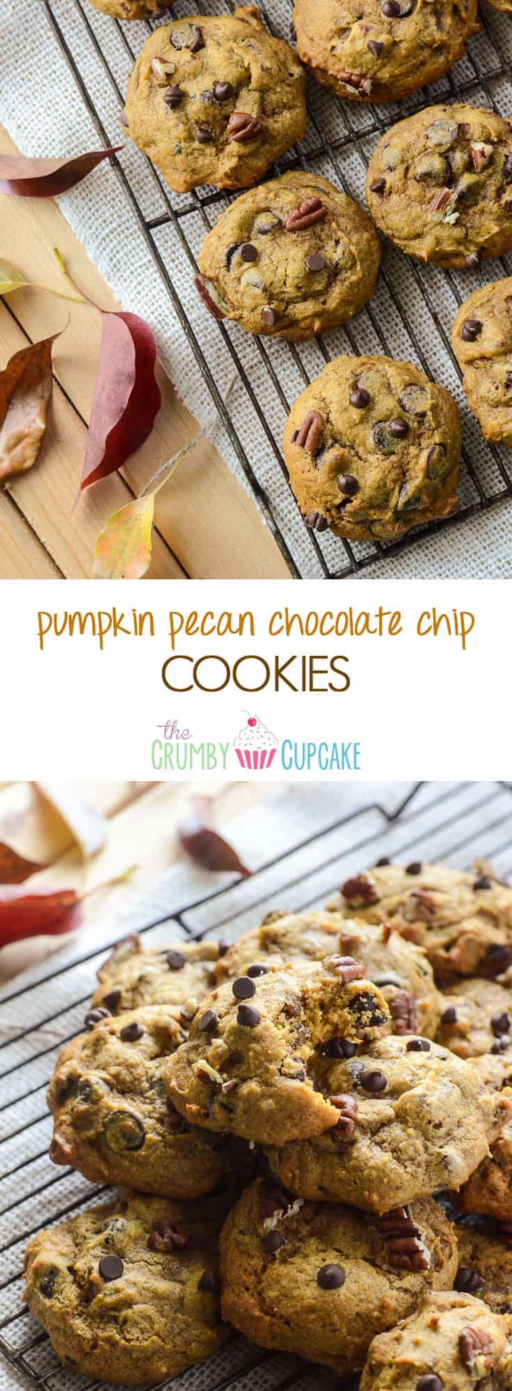 Pumpkin Pecan Chocolate Chip Cookies   A soft, cakey fall version of everyone's favorite cookie, packed with pumpkin & spice flavors! You won't be able to stop at one!