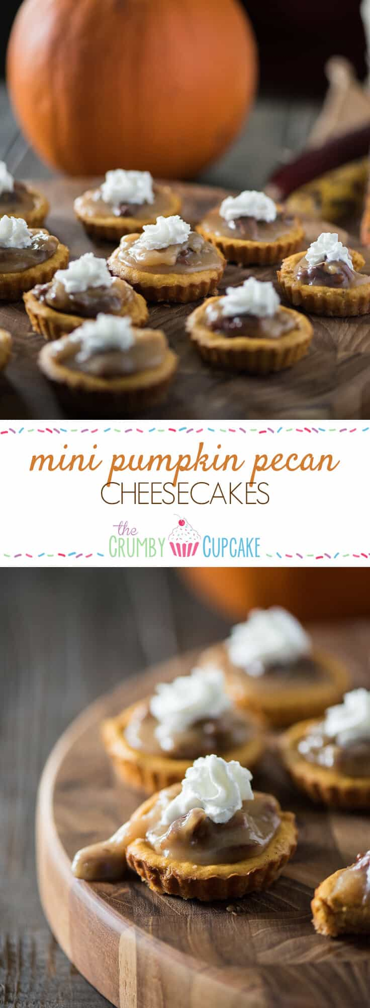 These adorable Mini Pumpkin Pecan Cheesecakes make indulgence nearly guilt-free! Tart-sized pumpkin cheesecakes topped with a praline pecan sauce and whipped cream are a seasonal two-bite treat!
