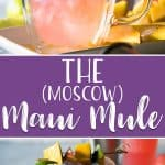 The Maui Mule puts a tropical twist on the classic cocktail! Trade out your typical vodka for something a little more pink, and your drink will be as gorgeous as a Hawaiian sunset!