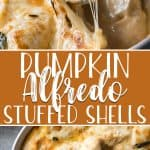These creamy, cheesy Pumpkin Alfredo Stuffed Shells are super easy and a surprising crowd-pleaser! Jumbo pasta shells, stuffed with sausage, onions, and ricotta cheeses, are covered in a smooth pumpkin alfredo sauce that gives this dinner an extra special flavor.