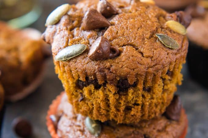 chocolate chip muffins with pumpkin